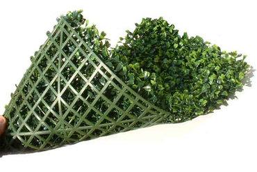 Buchsbaum kunsthecken probestück 20 x 20 cm = € 2,95