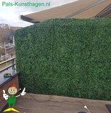 Buxus balkonscherm