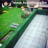 buxus kunsthaag als terrasafsluiting