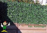 Pals-kunsthagen