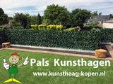 www.kunsthaag-kopen.nl
