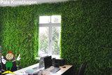 green wall gemaakt met kunsthaag