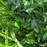 Jungle kunsthaag_
