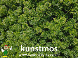 Kunsthaag Bos Mos 50x50cm